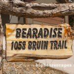 BBE Bearadise Cabin 00