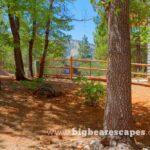 BBE GrizzlyGetaway Cabin 28