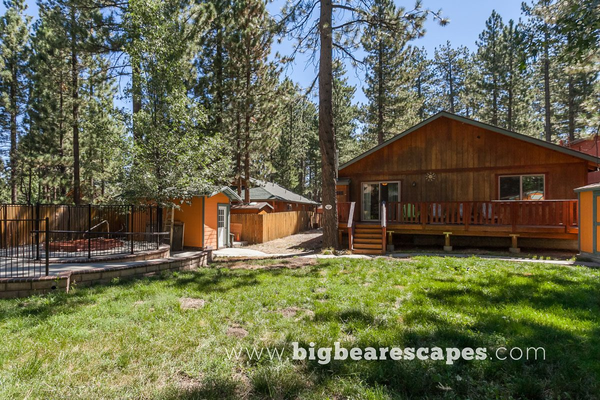 big bear cabins blog restaurants alpine pet friendly destination